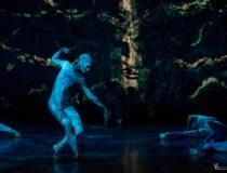 Bursztynowe Drzewo - przedstawienie w NCK