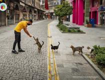 The Comedy Pet Photography Awards 2020 - Social distance meal order