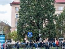Odsłonięcie tablicy na skwerze Profesora Władysława Bartoszewskiego