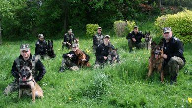 Photo of Międzynarodowy Dzień Psa. Czworonogi w Straży Granicznej