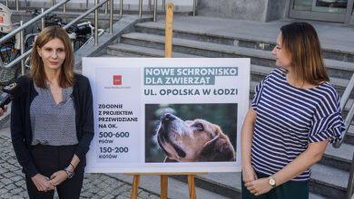Photo of W Łodzi powstanie nowe schronisko dla zwierząt