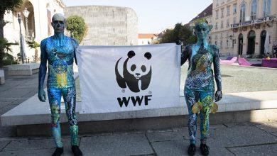 """Photo of Konferencja wodna UE. WWF ostrzega: """"Przywrócić życie europejskim rzekom i jeziorom"""""""