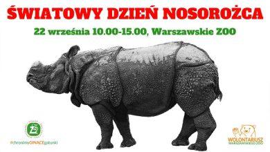 Photo of Światowy Dzień Nosorożca w warszawskim zoo. Piknik krwiodawcy
