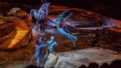 "Photo of Cirque du Soleil – TORUK w Polsce. Show inspirowane ""Avatarem"" Jamesa Camerona [ZDJĘCIA]"