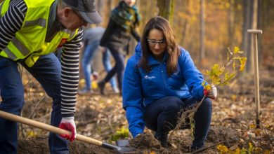 Photo of Trzy tysiące nowych drzew posadzono na Białołęce