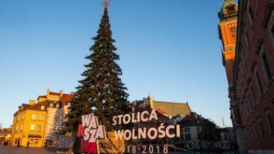 Photo of Na placu Zamkowym stoi już choinka. Warszawska iluminacja świąteczna o długości 680 km