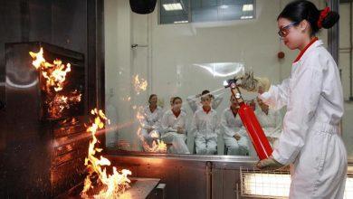 Photo of Linie Emirates poszukują kandydatów do międzynarodowej załogi. Spotkania rekrutacyjne w Polsce