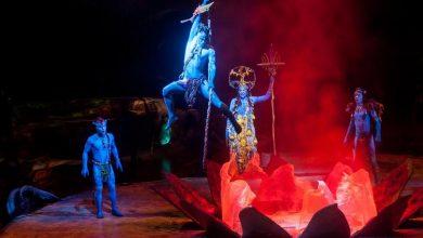 "Photo of Show Cirque du Soleil ""Toruk – Pierwszy lot"""