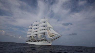 """Photo of """"Dar Młodzieży"""" wraca do Gdyni. Oficjalne powitanie Białej Fregaty 28 marca"""