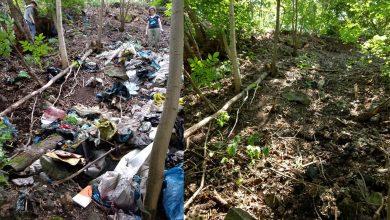 Photo of SprzątaMy Dzielnice w Katowicach. Trash Challenge – wyzwanie dla każdego mieszkańca