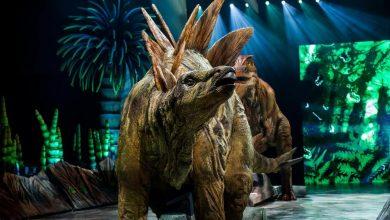 Photo of Wędrówki z dinozaurami. Zobaczcie wielkie gady w stolicy Małopolski [ZDJĘCIA]