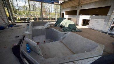 Photo of ZOO w Łodzi. Powstaje nowy pawilon dla hipopotamów