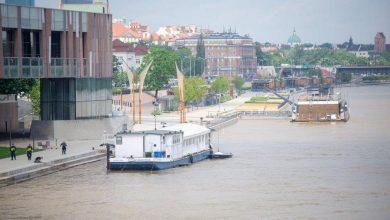 Photo of Fala kulminacyjna na Wiśle w Warszawie. Zachowajcie ostrożność! Uratowano kaczą rodzinę