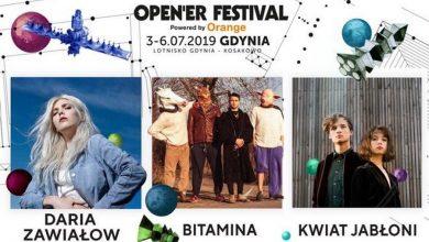 Photo of Cool Kids Of Death, Daria Zawiałow, Bitamina, Kwiat Jabłoni – polskie brzmienie na Open'er Festival 2019