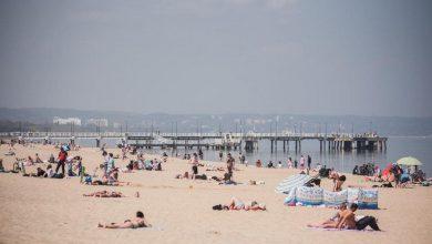 Photo of Wróciły sinice w wodach Bałtyku. Zakaz kąpieli na licznych nadmorskich plażach MAPA