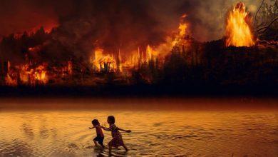 Photo of Płonie Amazonia, Arktyka, Afryka i Syberia! Grenlandia się topi! Prezydent Brazylii Bolsonaro odrzuca pomoc