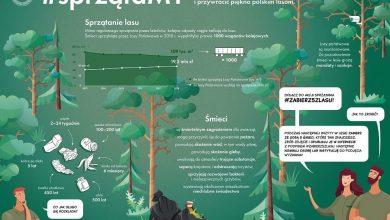 Photo of #sprzątaMY polskie lasy z Parą Prezydencką. Statystyki dotyczące ich zaśmiecania