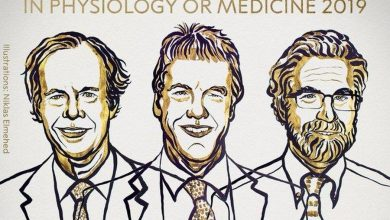 Photo of Nagroda Nobla 2019 z medycyny lub fizjologii. Otrzymały ją trzy osoby