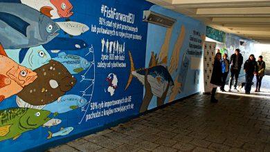 Photo of Jaki Bałtyk wybierasz? Morskie murale w gdańskim przejściu podziemnym