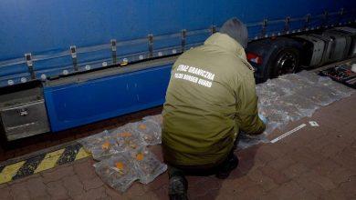 Photo of Zatrzymano 56 kg bursztynu. Jantar ukryto w zbiorniku paliwa i kanapie