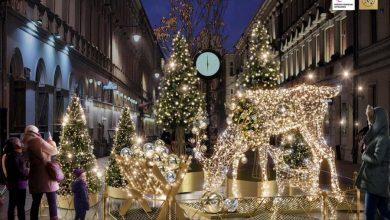 Photo of Nowa iluminacja świąteczna rozbłyśnie w Łodzi. Leśna Przygoda czeka