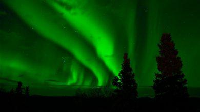"""Photo of Zorze polarne. Gdzie i jak można zobaczyć """"tańczące światła"""" w 2020 roku? Podpowiadamy"""