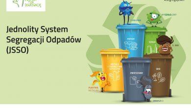 Photo of Wszystko o nowych zasadach segregacji odpadów na pięć frakcji