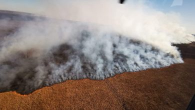 Photo of Największy park narodowy w Polsce płonie! Ogień strawił już 6 000 hektarów unikalnych terenów w dolinie Biebrzy