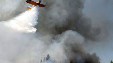Photo of Czeka nas kolejna rekordowa susza i plaga pożarów. Płoną lasy [WIDEO]