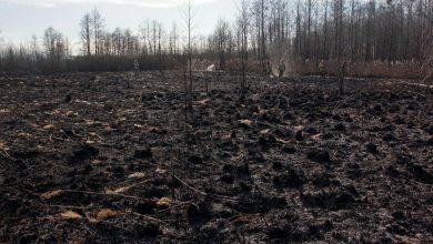 Photo of Pożar w Biebrzańskim Parku Narodowym ugaszony! Spłonęło 5280 hektarów