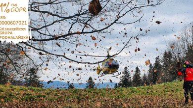Photo of Pieniny. Spadł z pnia złamanego w połowie drzewa. Zabrał go śmigłowiec LPR [WIDEO]