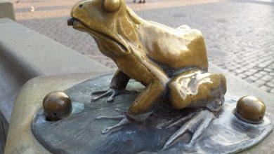"""Photo of Festiwal Filmowy CAMERIMAGE 2020 w Toruniu. Historia """"złotej"""" żaby"""