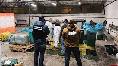 Photo of Ukryto w zamrożonej pulpie ananasowej kokainę. Jest warta ponad 3 mld zł