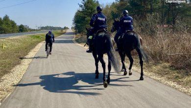 Photo of Dziki Zachód w Częstochowie. Konny pościg policjantów za… rowerzystami