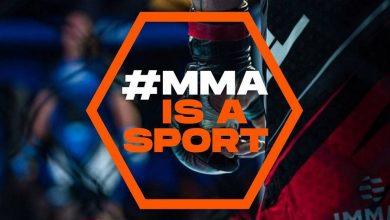 Photo of Petycja walcząca o uznanie MMA za sport. Zebrano ponad 14 tysięcy podpisów