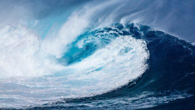 Photo of Światowy Dzień Oceanów. Czy świat tonie? Czy ryby znikną? Ocean umiera
