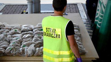 Photo of Udaremniona próba przemytu ponad 100-kilogramów bursztynu