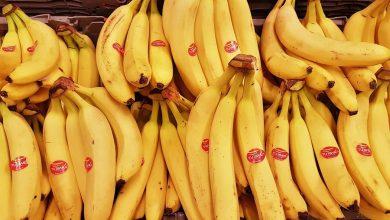 Photo of Kolumbijska kokaina w jednym z polskich sklepów. W bananach znaleziono 19 kg narkotyku