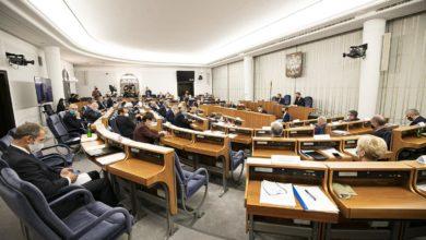 Photo of Piątka Kaczyńskiego w Senacie. 36 poprawek do ustawy o ochronie zwierząt