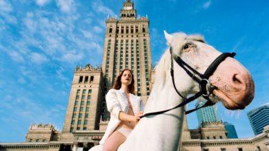 """Photo of """"Jaki jest koń?"""" – gwiazdy ratują konie przeznaczone na rzeź! Możesz pomóc przed cierpieniem i okrutną śmiercią!"""