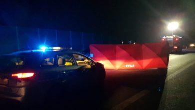 Photo of A1. Zderzenie pojazdu z łosiem. Zginął jeden z pasażerów