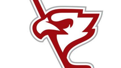 Photo of Polska Hokej Liga. Nowy logotyp z głową orła