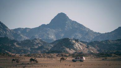 Photo of Faworyci rajdu Dakar 2021. Ciekawostki