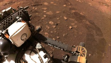 Photo of NASA. Perseverance po raz pierwszy ruszył po powierzchni Marsa. Nowe zdjęcia