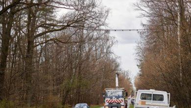 Photo of Łódź. Pierwszy w Polsce most wiszący dla wiewiórek